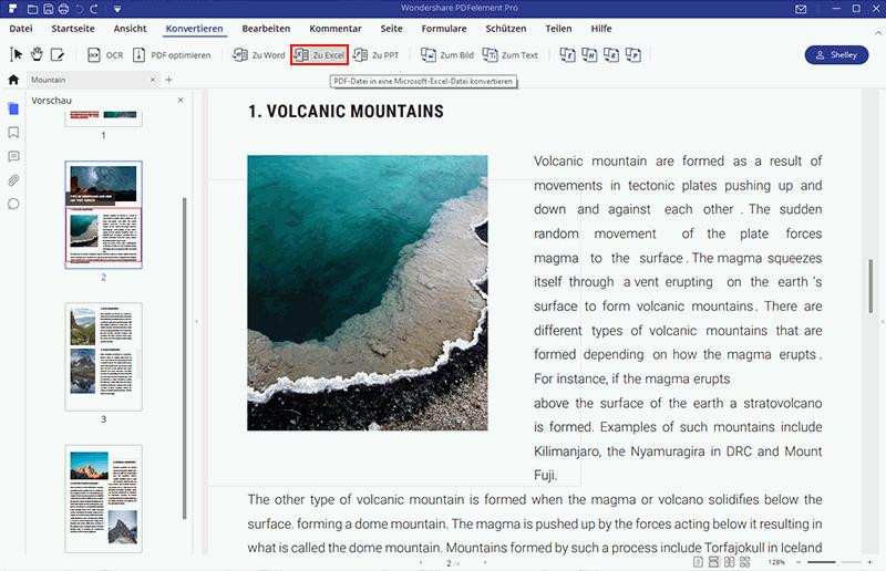bildbasierte PDF-Datei zu Excel konvertieren
