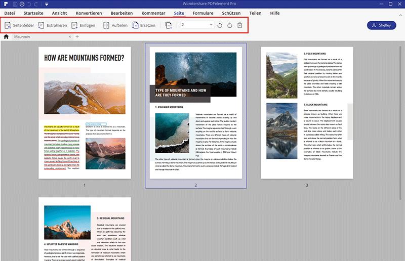 Alle PDF-Seiten als ein Bild speichern