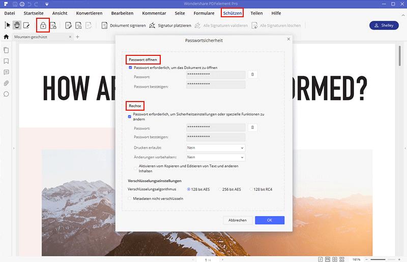 pdf passwort schützen