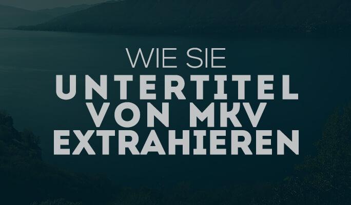 Wie Sie Untertitel von MKV extrahieren