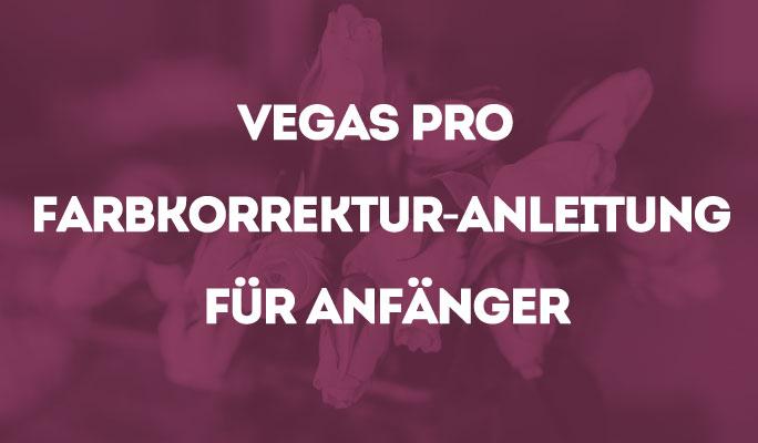 Vegas Pro Anleitung zur Farbkorrektur für Anfänger