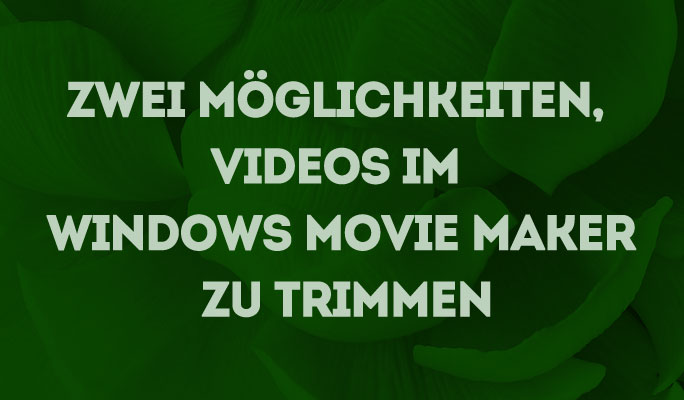 Zwei Möglichkeiten, Videos im Windows Movie Maker zu trimmen