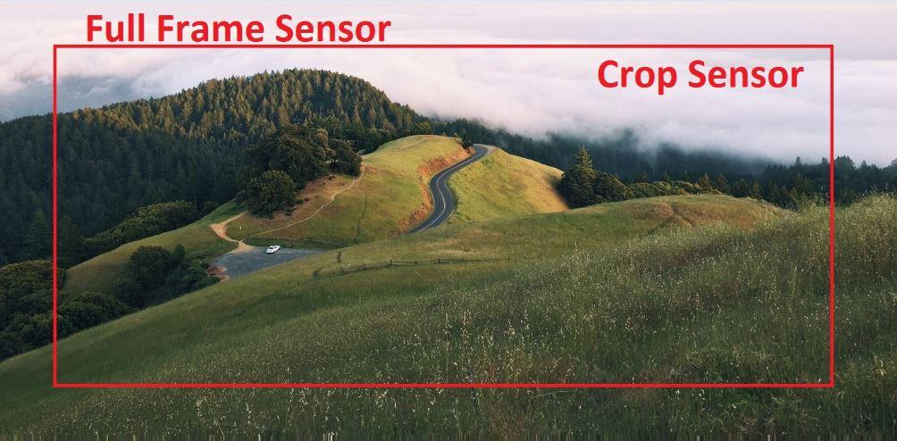 frame-sensor