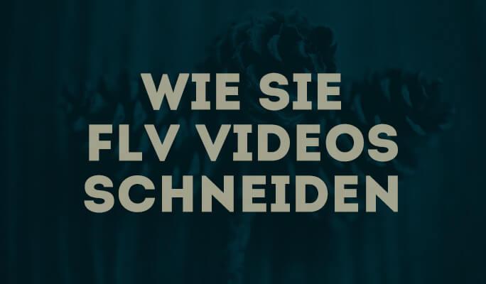 Wie Sie FLV Videos schneiden