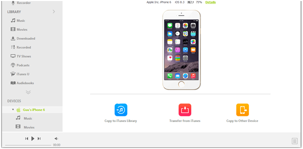 Wie man MP3 auf das iPad mit/ohne iTunes Sync überträgt