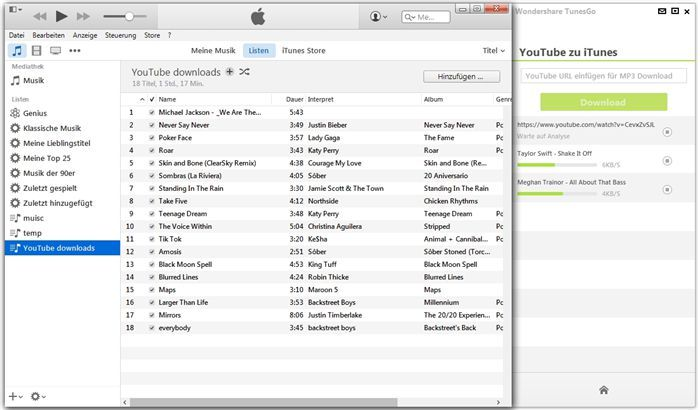 Die besten iTunes-Organisierer